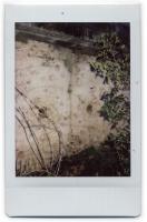 http://www.nfcallaway.com/files/gimgs/th-10_Polaroid_Muro-web.jpg